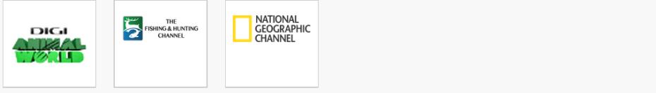 Pachet Popular Digi Tv.